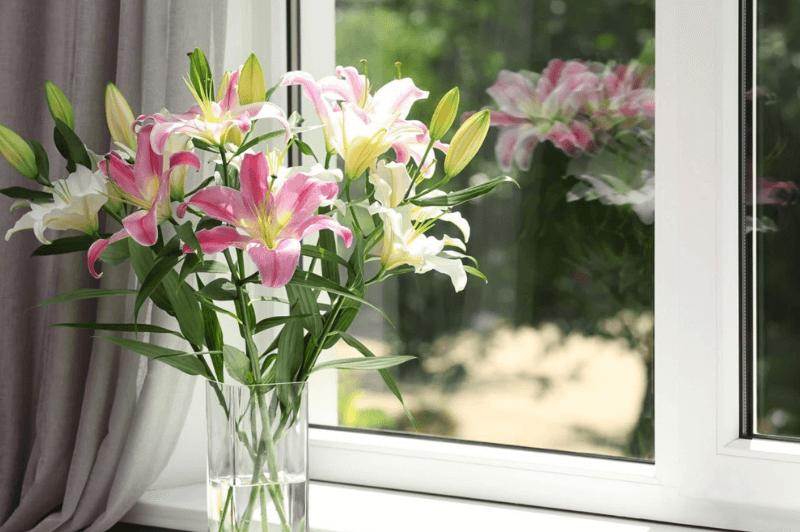 Qualität_der_Fensterverglasung